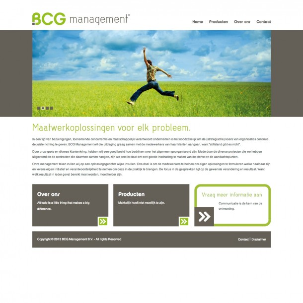 BCG Management